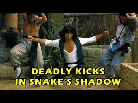 Deady Kicks In Snakes Shadow
