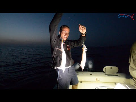 Pesca di radure di Kama video
