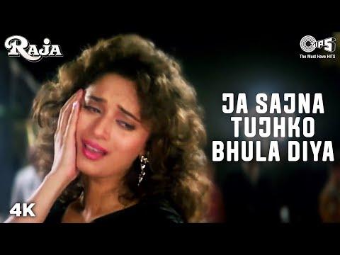Jaa Sajna Tujhko Bhula -  Song  Video | Raja | Madhuri Dixit & Sanjay Kapoor | Alka & Udit