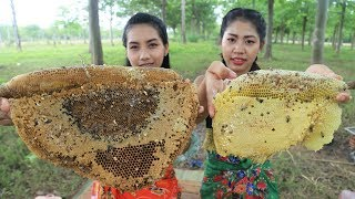 Yummy cooking honeycomb grilled recipe - Cooking skill