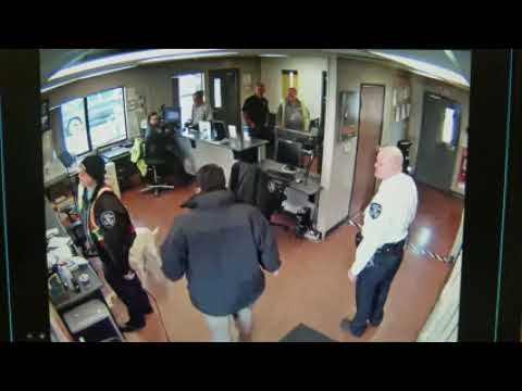 Лабрадор украл в полицейском участке бурито