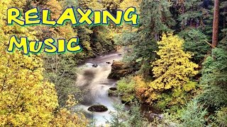 Релаксация музыка - индийская, медитация, море, чтобы узнать, мечтать, немые,