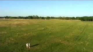 F2D Combat Practice Texas Style