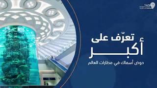 Video: Akuarium Terbesar di Bandara Jeddah
