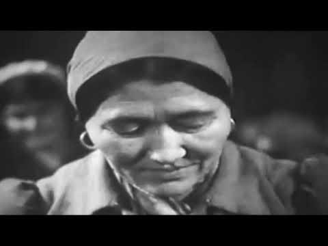 Глава Администрации района вручил медали к 75-летию Великой Победы
