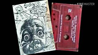 Section8 - Beginning Of The End (complete 1996 AZ Punk)