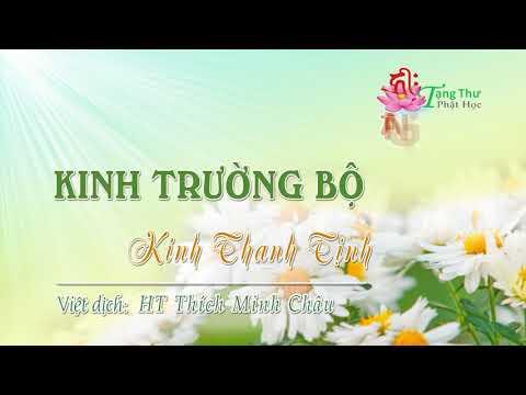 29. Kinh Thanh tịnh (Pāsādika sutta)