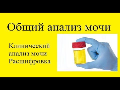 Как долго готовятся анализы рв вич гепатит