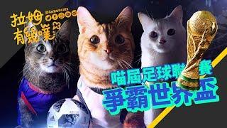 World Cup Cats 2018 |LAMUNCATS ⋈