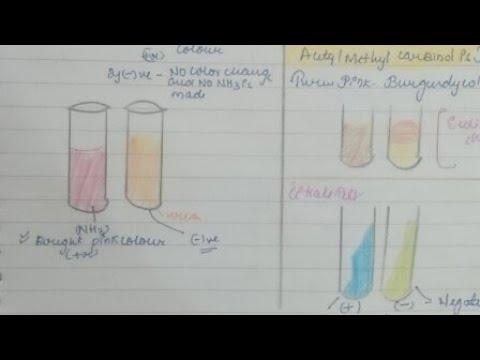 Prosztatabiopsziák előtt és után