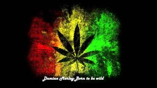 Damian Marley-Born to be wild.mp4