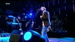The Divine Comedy - Queen of the South/Maneater (Haldern Pop Festival 2006)