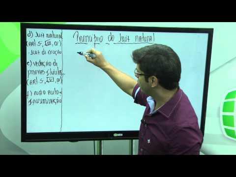 Princípios do Processo Penal – Aula 2