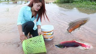 Smart Girl Using Basket Catch A Lot Of Fish In Cambodia