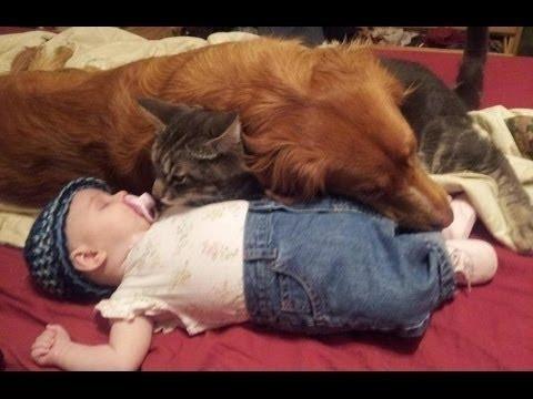 Мама снимала, как спит ее ребенок. Но внезапно рядом с малышом появился он!