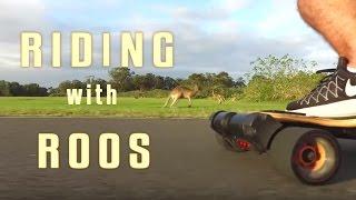 Evolve Bamboo GT and Kangaroos