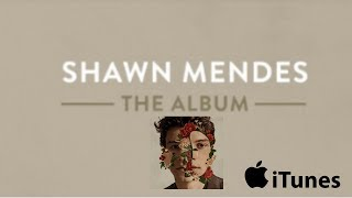 shawn mendes illuminate album download rar