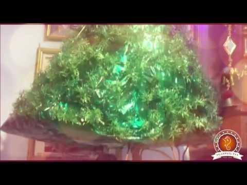 Vidhati Patel Home Ganpati Decoration Video