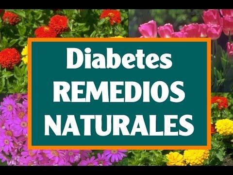 Diabetes tipo 2 es curable