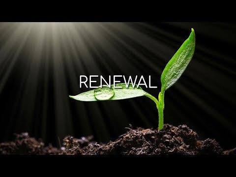 Renewal - Morning Manna #3128