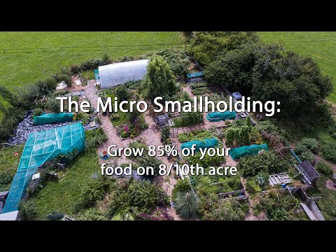 The Micro Smallholding: Grow 85% of your food on 8/10th acre