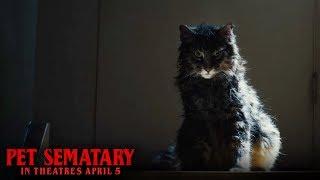 "VIDEO: PET SEMATARY – ""Dead Digital"" Clip"