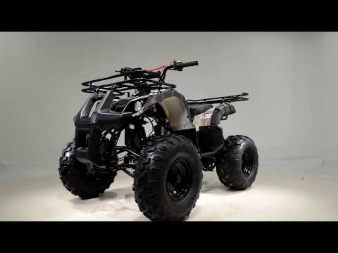 2019 Taotao USA TForce 107 in Dearborn Heights, Michigan - Video 1