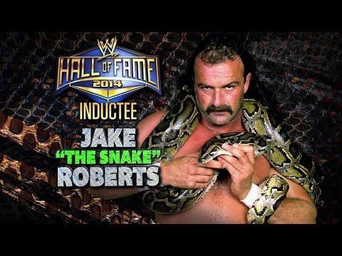 Former Pro Wrestler Jake The Snake Roberts Hospitalized