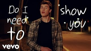 Shawn Mendes   Show You