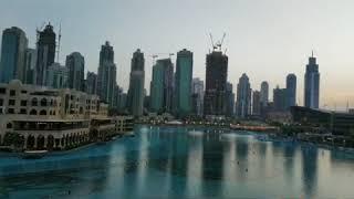 Dubai, Miracle Garden & Dubai Mall