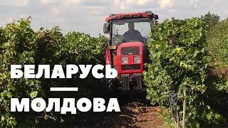 БЕЛАРУСЬ-МОЛДОВА | Документальный фильм