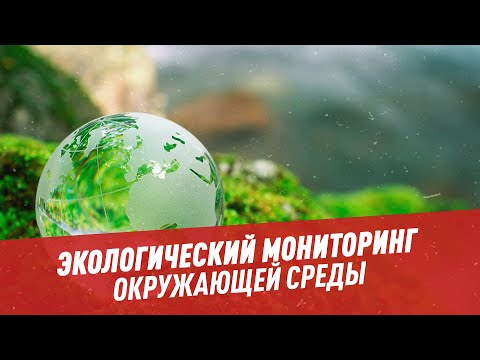 Экомониторинг: кто следит за изменением окружающей среды - Школьная программа для взрослых