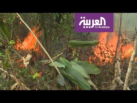 العرب اليوم - شاهد: آثار الدمار في غابات الأمازون البرازيلية