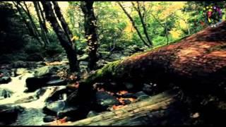 Cansu Koç ♫ ♥ ♪ Kömür Gözlüm