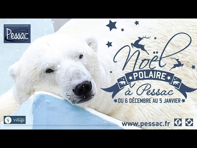 Noël polaire - courts métrages
