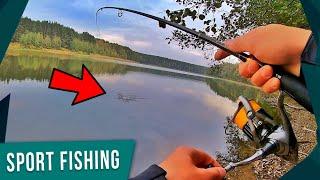 Рыбалка на лесном озере в краснодарском крае