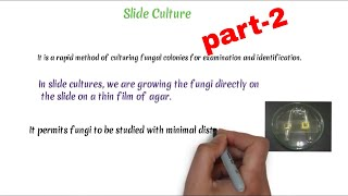 Germ Tube Test    Slide Culture    Hair Perforation Test    special stain in Mycology    Part -2