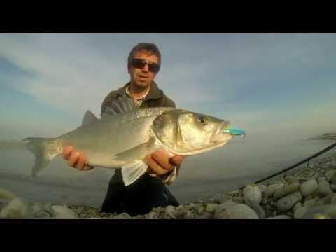 La pesca sul video di fiume Haim Buryatia
