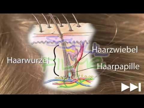 Das Haar von den ätherischen Ölen zu schmieren