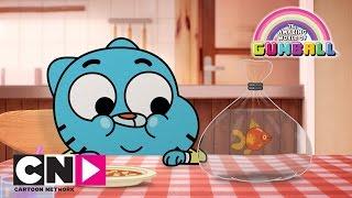 Маленький Гамбол | Удивительный мир Гамбола | Cartoon Network