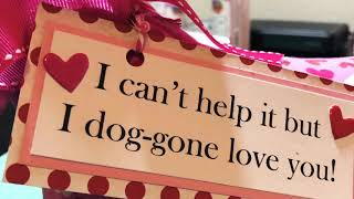 The Valentines Dog Project Share!!
