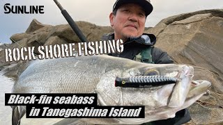 【JAPANESE ROCKSHORE FISHING!!】Big Black-fin Seabass In Tanegashima Island.