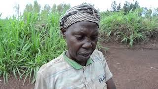 Yakorewe akarengane na GITIFU kurubu nibitaro nabyo byaramwigaritse