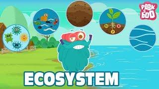 ECOSYSTEM - The Dr. Binocs Show | Best Learning Videos For Kids | Peekaboo Kidz