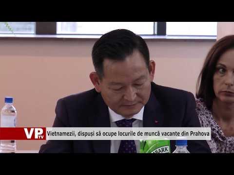 Vietnamezii, dispuși să ocupe locurile de muncă vacante din Prahova