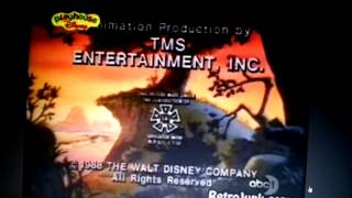 Walt Disney Television/Buena Vista International, Inc. (1988)