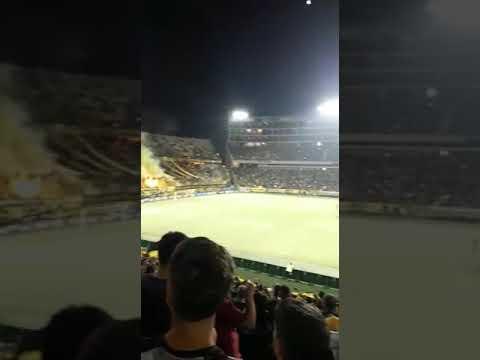 """""""Hinchada de Peñarol vs Belgrano"""" Barra: Barra Amsterdam • Club: Peñarol"""