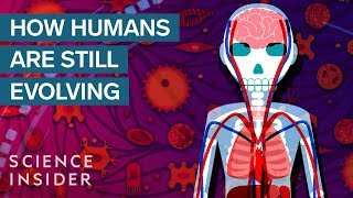 3 Surprising Ways Humans Are Still Evolving