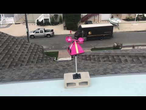 Preventing Seagulls from Roosting on Homeowners Roof in Long Beach Island, NJ