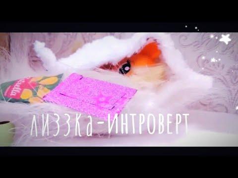 MLP MV/Интроверт-Лиззка